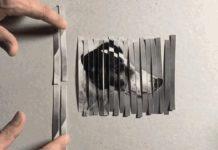 Questa illusione ottica moltiplica i cani ci spiega come funziona Photoshop