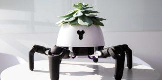 """Questo piccolo """"robot ragno"""" vi aiuterà a prendervi cura delle vostre piante"""