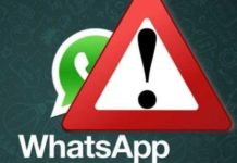 whatsapp-truffe