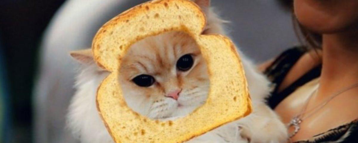 snapchat-gatti