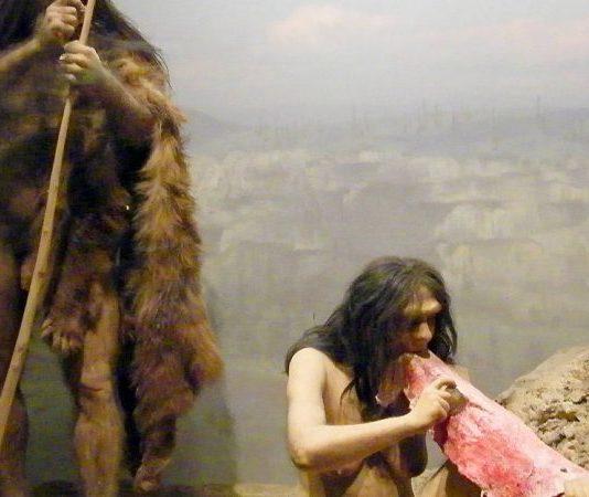 cannibalismo-neanderthal