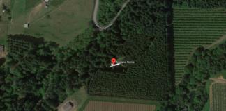 google-maps-aereo-casa