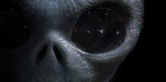 vita-aliena