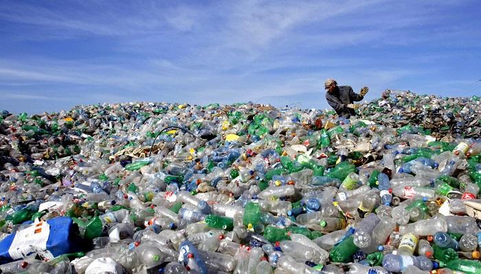 Batteri in aiuto dell'ambiente: organismi in grado di mangiare la plastica